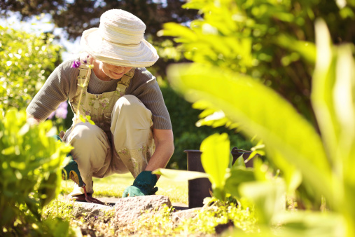 Senior woman with gardening tool working in her backyard garden